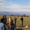 Logo Más de 150 municipios se asociaron para promover la agroecología.