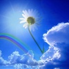 Logo Momentos para recordar- Meditaciòn, reconexiòn con nuestra alma-