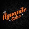 Logo AGUANILE RADIO NEF