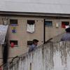 Logo Ana Camarda sobre reformas en Ejecución Penal