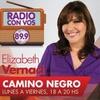 Logo Camino Negro 14/10/2015