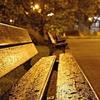 Logo La Municipalidad de La Plata sigue reforzando la asistencia a personas en situación de calle