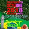 Logo Novedades Octubre 2018 - Segunda Parte y Una Lágrima por Brasil