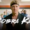 Logo No Sabes Nada #8: Cobra Kai