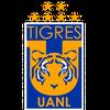 Logo La nueva adquisición de Tigres