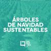 Logo Disruptivo 199 - Árboles de Navidad Sustentables