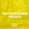 Logo Reforestamos México y Joven Emprendedor Forestal