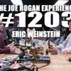 Logo #1203 - Eric Weinstein