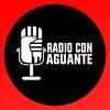 """Logo Milagro Sala: """"El Gobierno quiere un pueblo sumiso y sin educación"""""""