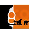Logo entrevista a Hernesto Mussano 2