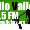 Logo Vallekas
