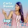 logo Top 104.9 - Carla Bunny