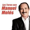 logo Los Toros   Manuel Molés