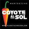 logo Coyote aL sol