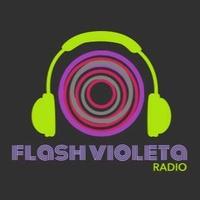 Logo Flash Violeta