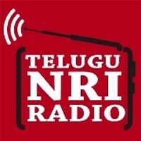 Logo Telugu NRI
