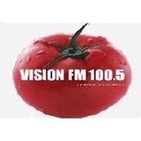 Logo Visión FM 100.5