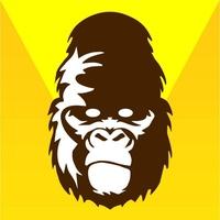 Logo Monopolis