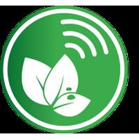 Logo Palabra de Campo