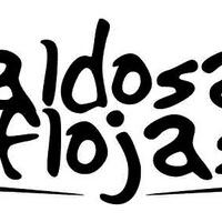Logo BALDOSAS FLOJAS